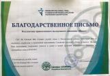 Активисты православного молодёжного движения «Ника» г. Мелеуза приняли участие в концертной программе Семейного выходного