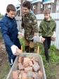 Активисты молодежного движения потрудились на уборке территории Епархиального склада.
